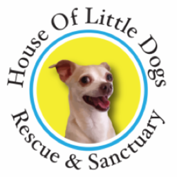 House of Little Dogs