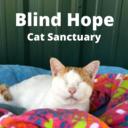 NWA Gives: Blind Hope Cat Sanctuary