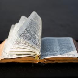 Dominican Republic Bibles