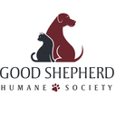 NWA Gives: Good Shepherd Humane Society