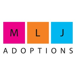 MLJ ADOPTIONS INTERNATIONAL INC