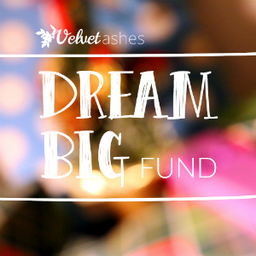 Velvet Ashes' Dream Big Fund