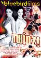 TWINZ  (DISC)
