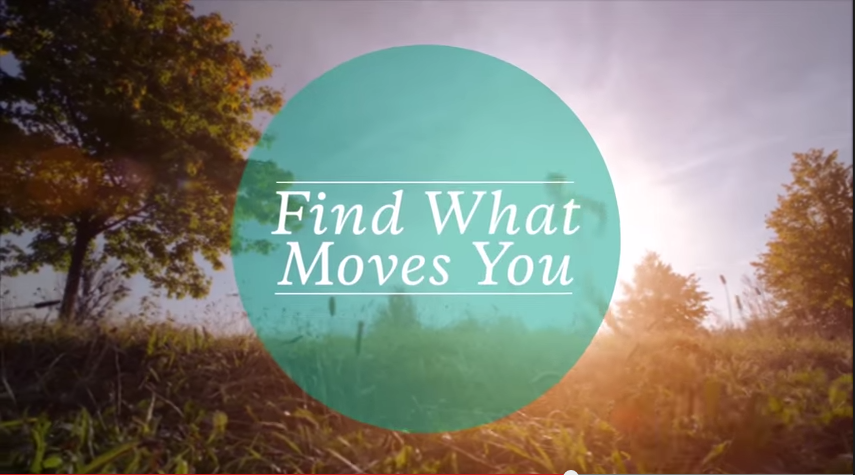 Findwhatmoves You