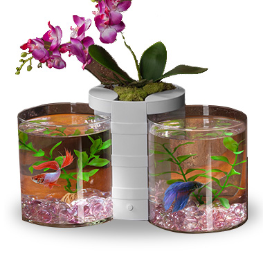 Betta Cylinder & Planter White