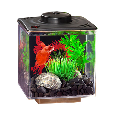 Betta Cube Gallon with LED Black