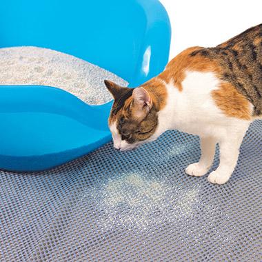Pet Valu Products Cat Food