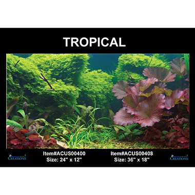 Static Cling Background Tropical