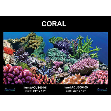 Static Cling Background Coral thumbnail1