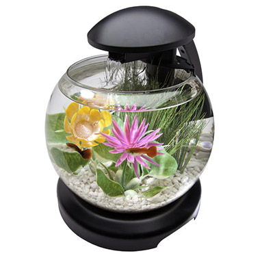 LED Waterfall Globe Desktop Aquarium Kit