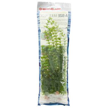 Cabomba, Cabomba, Ambulia and Ambulia Combo Pack Artificial Plants