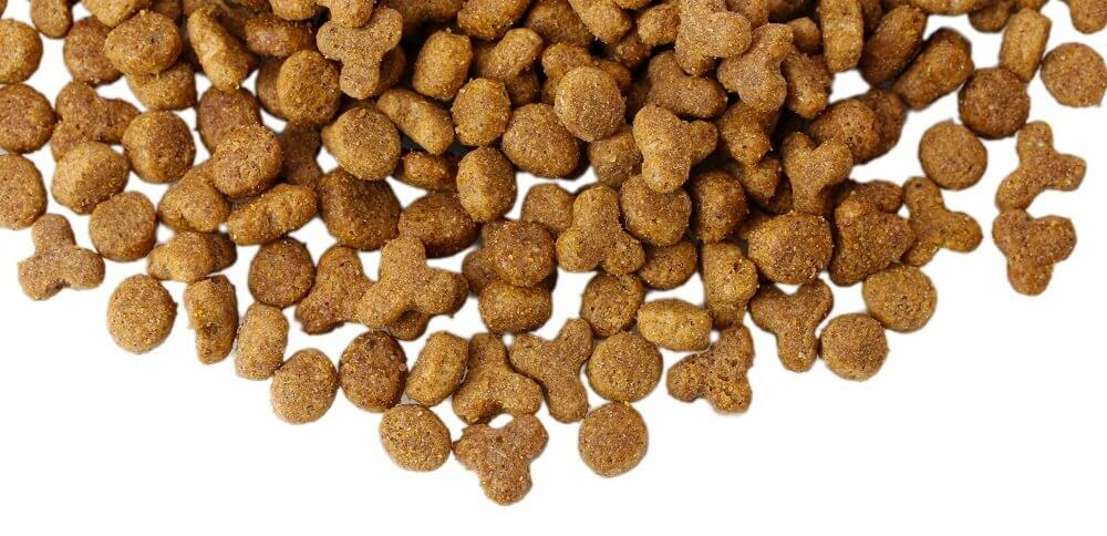 Pet Food Primer