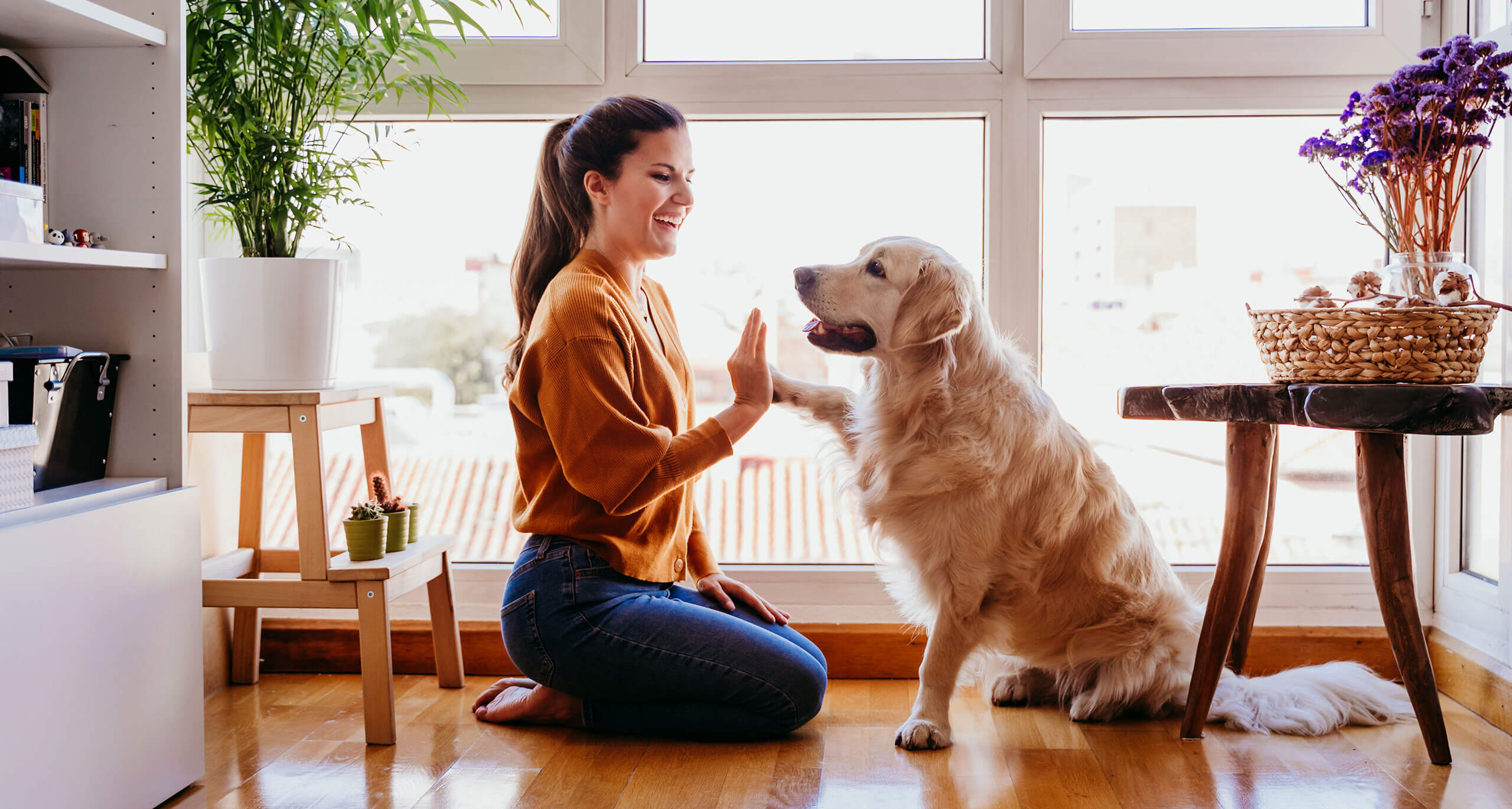 5 Stay-Home Activities for Pet Parents