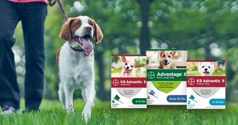 Help protect your dog from parasites with K9 Advantix® II and Advantage® II for dogs