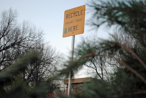 Prairie Village Christmas Tree Recycling