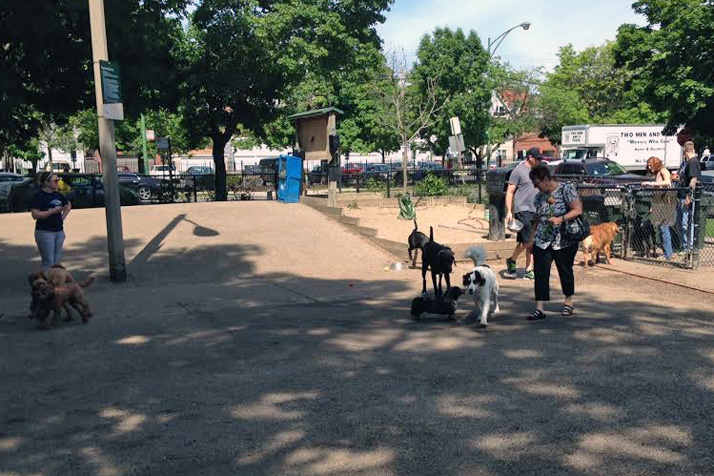 This off-leash dog park in Chicago takes up less than a city block.