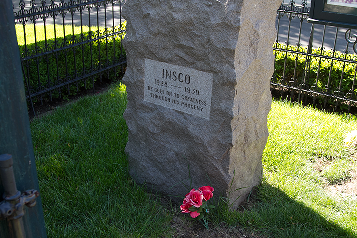 Inisco_Grave