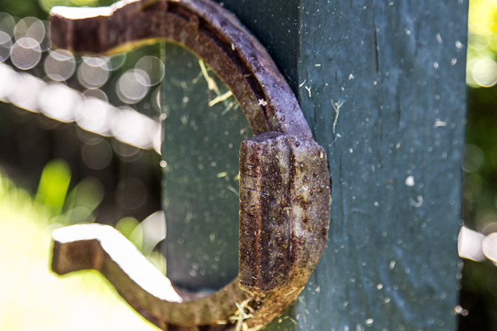 On of Lawrin's horseshoes is affixed to the photobox at the memorial.