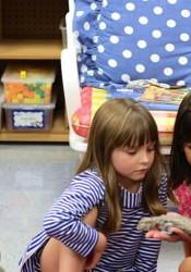 Shawnee Mission School District kindergarteners.