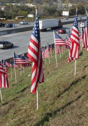 Boy Scouts have erected 725 flags along I-35 to honor Veterans Day.