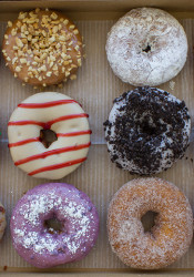 Duck_Donuts