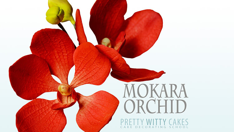 How to make mokara orchid flowers tutorial at Pretty Witty Academy