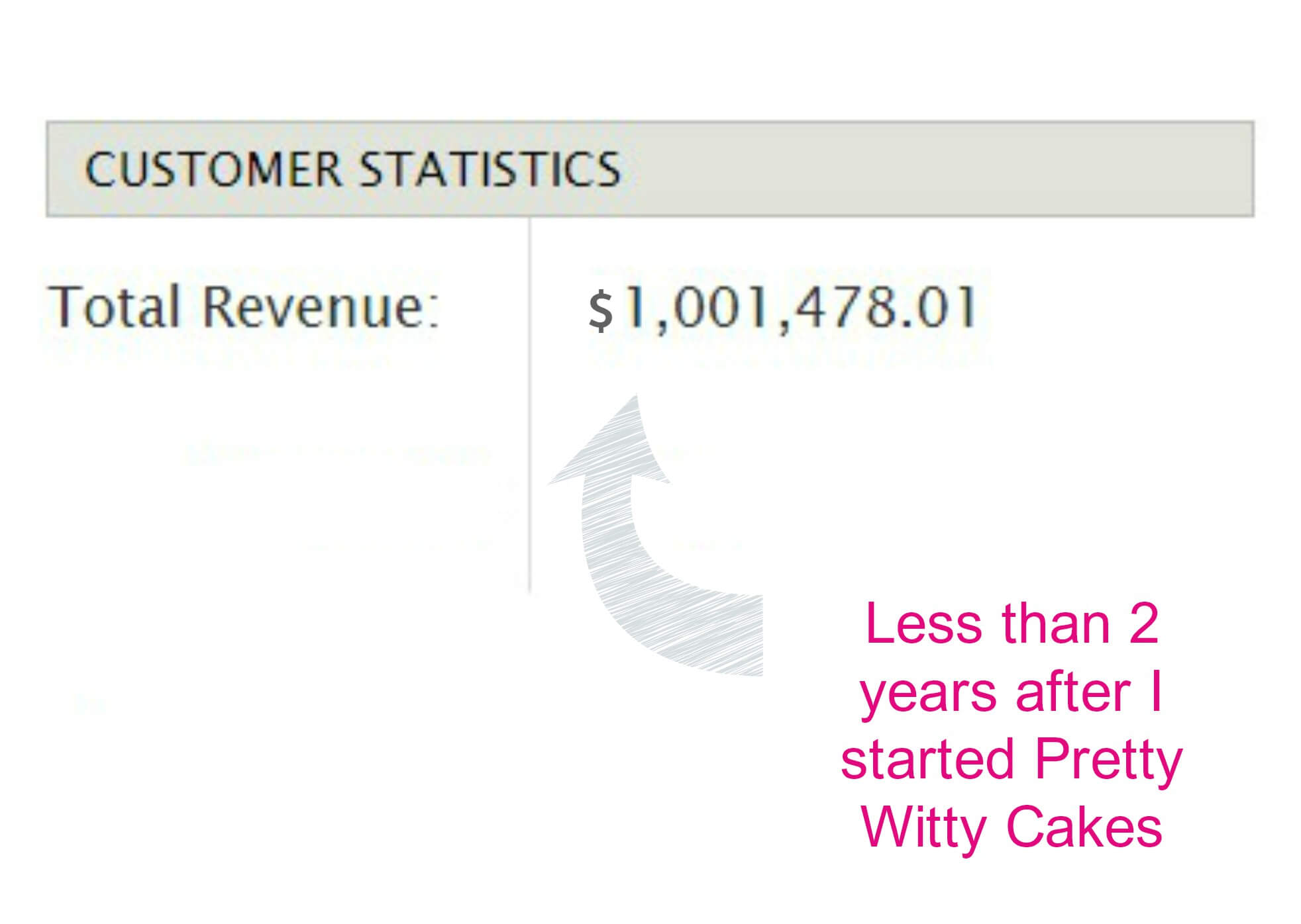 Pretty Witty CAkes revenue year 2