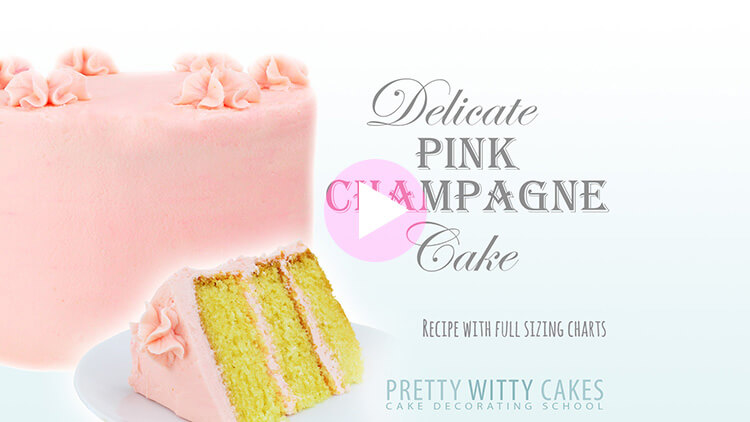 Delicate Pink Champagne Cake tutorial at Pretty Witty Academy