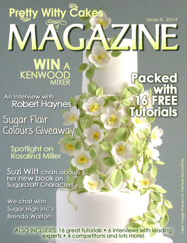 The Pretty Witty Cakes Magazine Issue 4