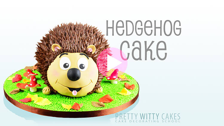 Hedgehog Cake Tutorial Preview at Pretty Witty Academy