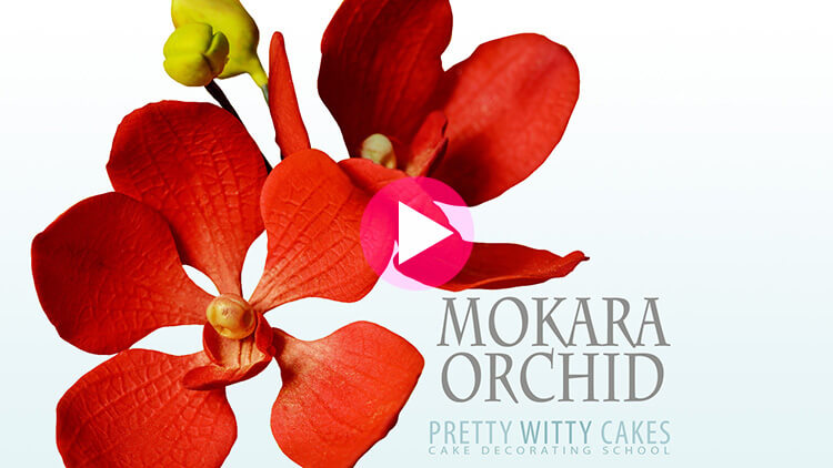 Mokara Orchid Tutorial at Pretty Witty Academy