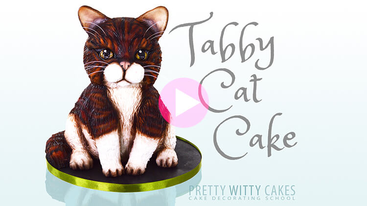 Tabby Cat Cake preview tutorial at Pretty Witty Academy