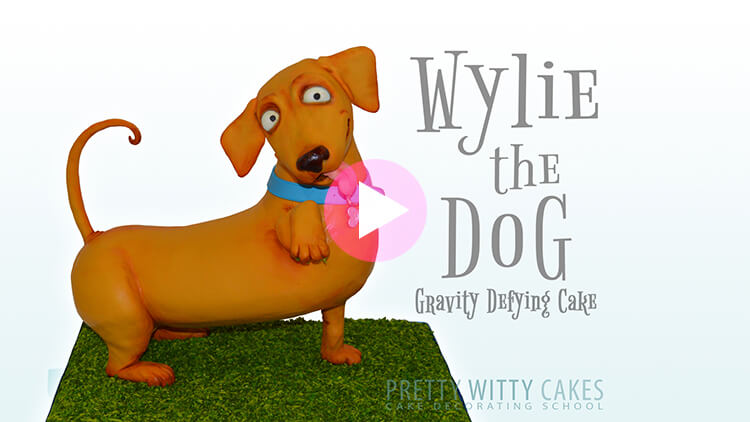 HOw to make a gravity defying dog cake at Pretty Witty Academy