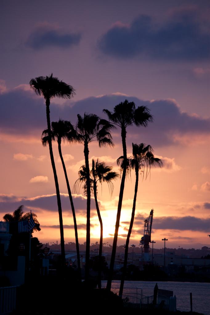 Coronado Sunset by Vegan À La Mode