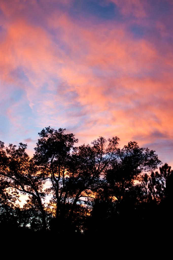 Beautiful sunset while camping in Julian, CA