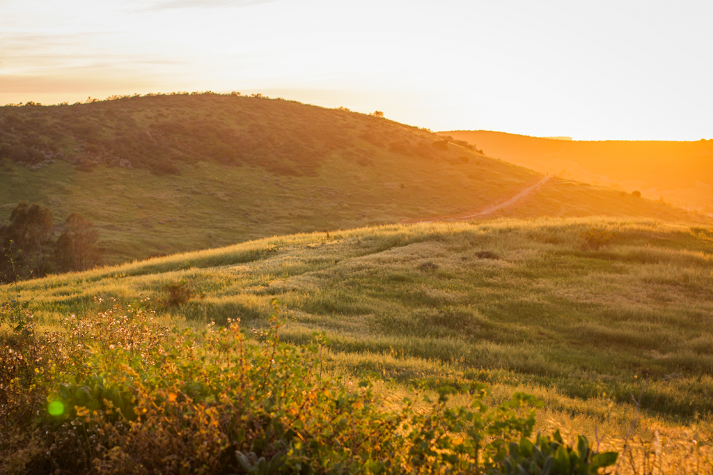 Green meadows in San Diego. Metate Meadows in Poway