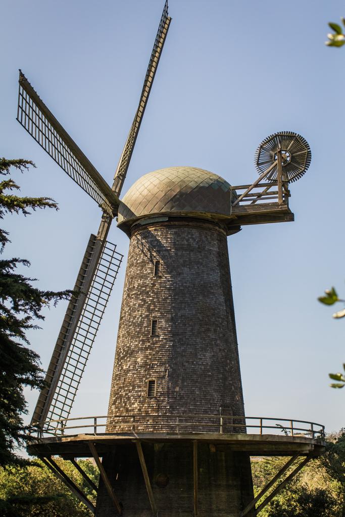 Dutch Windmill | San Francisco | Vegan Travel | Vegan San Francisco