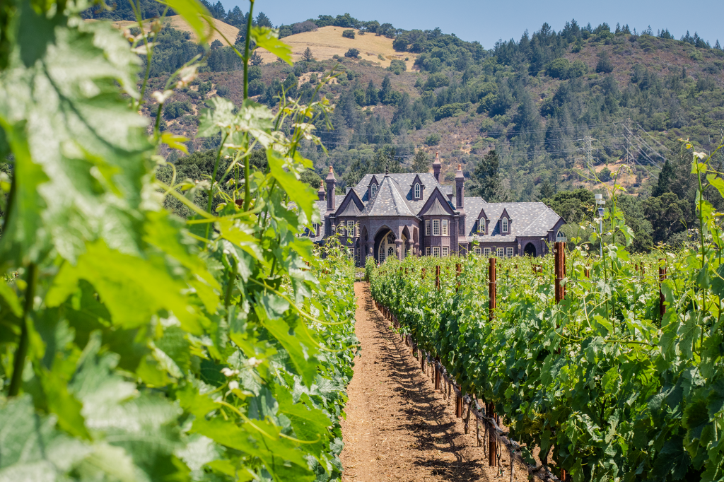 Napa Valley | Winery | Castle in California | Chateau | Vineyard | Wine Tasting | San Francisco | Northern California