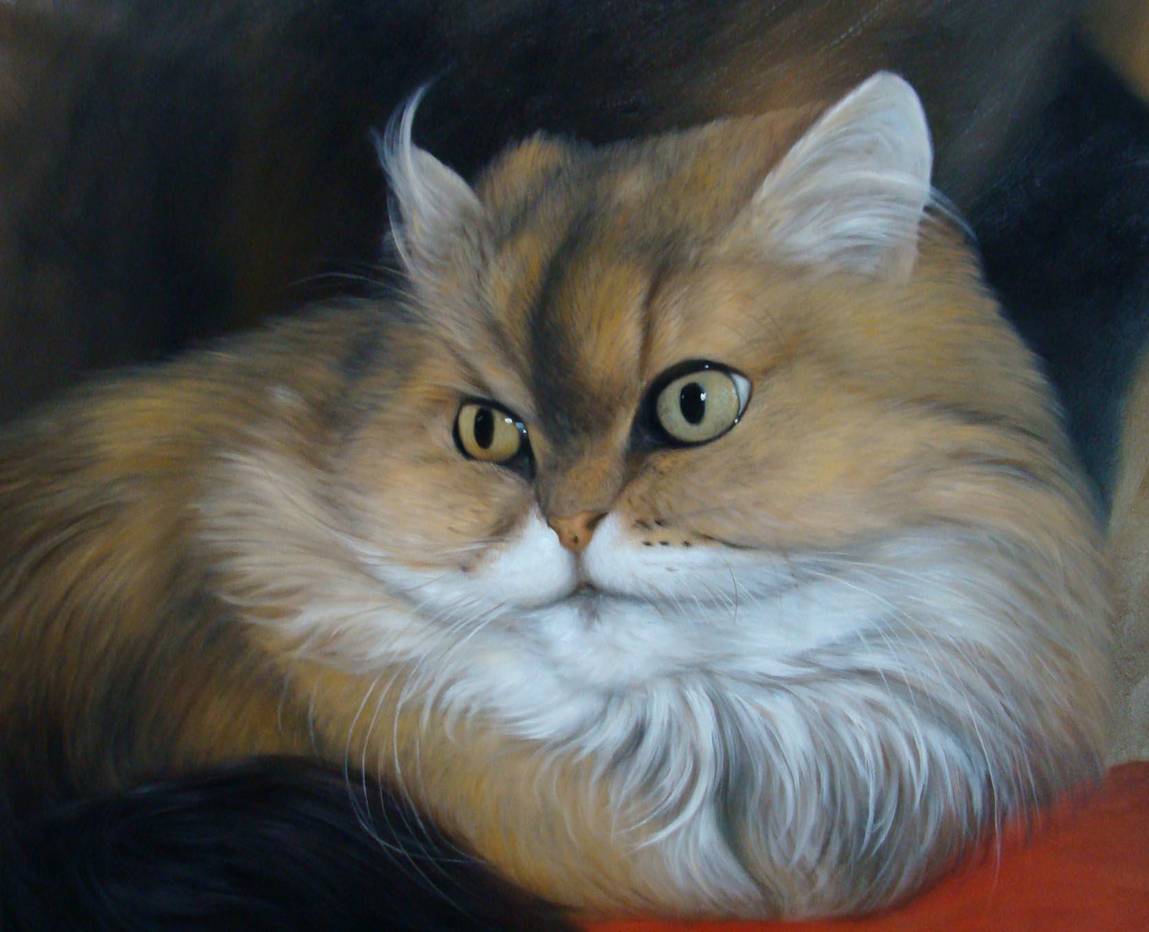 Foto einer Katze als Ölportrait