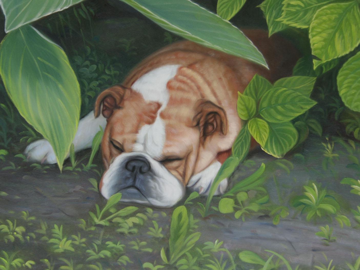 cane che dorme nel giardino come pittura ad olio