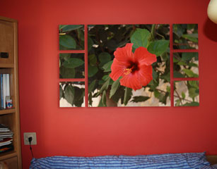 Hawaiian Flower on Canvas Split