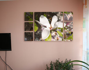 white flower canvas split
