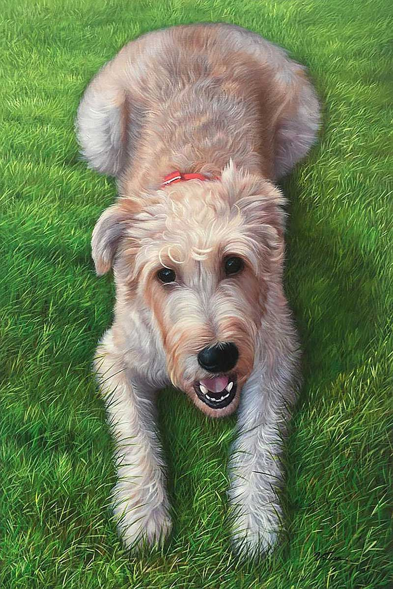 Cute oil dog portrait high quality grass happy
