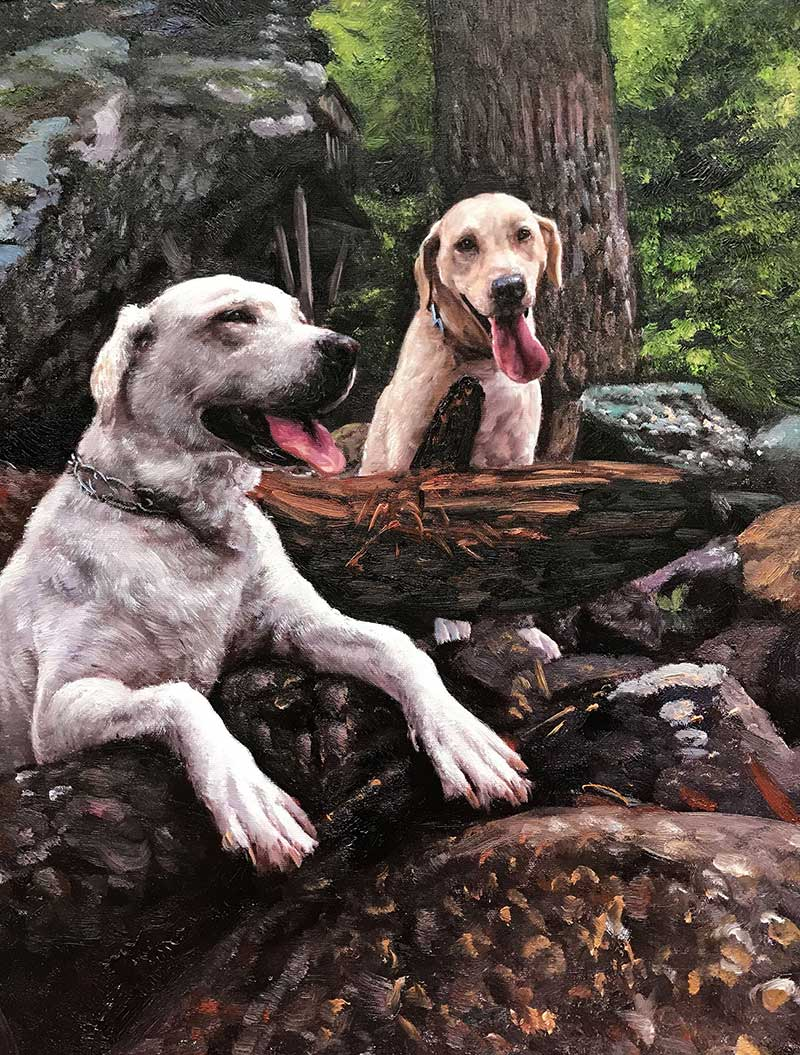 oil painting two labrador labs light brown white in the woods smile