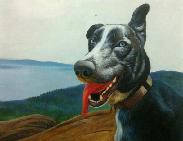 pet portraits - dog painting in oil
