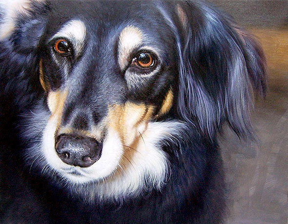 dog portraits in oil
