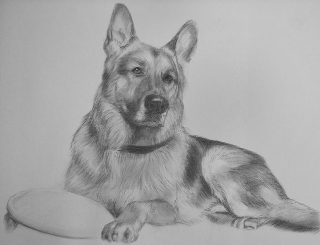 dog painting in charcoal
