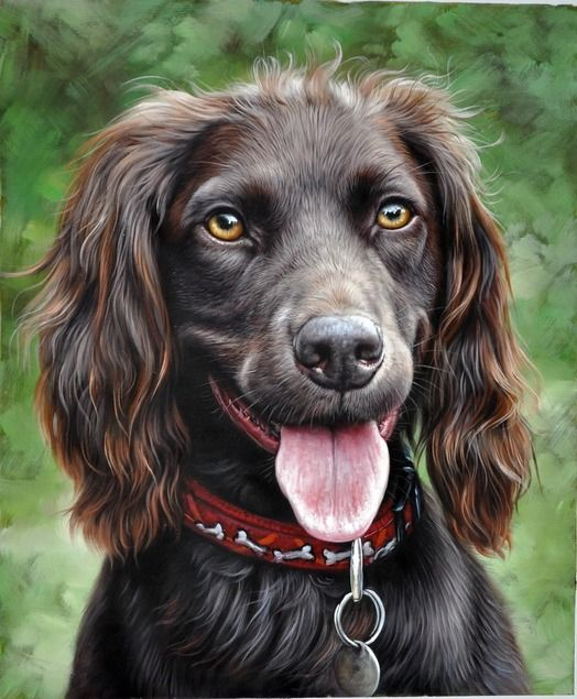 pet portraits from photos - dog in oil