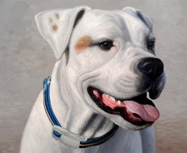 pet portrait in oil
