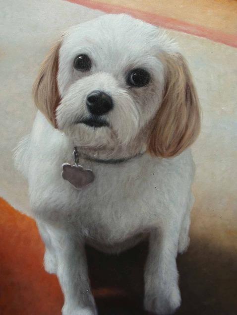 cute dog oil portrait